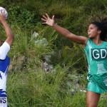 Womens Netball, Bermuda February 23 2013 (43)