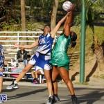 Womens Netball, Bermuda February 23 2013 (44)