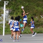 Womens Netball, Bermuda February 23 2013 (46)