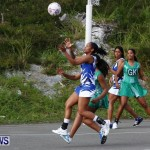 Womens Netball, Bermuda February 23 2013 (47)