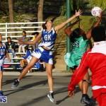 Womens Netball, Bermuda February 23 2013 (48)