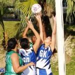Womens Netball, Bermuda February 23 2013 (49)