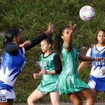 Womens Netball, Bermuda February 23 2013 (5)