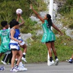 Womens Netball, Bermuda February 23 2013 (51)