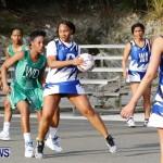 Womens Netball, Bermuda February 23 2013 (53)