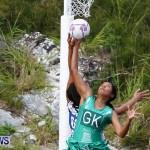 Womens Netball, Bermuda February 23 2013 (54)