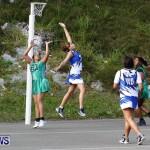 Womens Netball, Bermuda February 23 2013 (9)