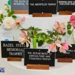 75th Agricultural Exhibition Bermuda Roses, April 18 2013-37