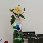 75th Agricultural Exhibition Bermuda Roses, April 18 2013-40