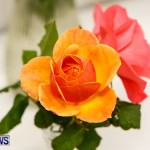 75th Agricultural Exhibition Bermuda Roses, April 18 2013-41