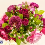 75th Agricultural Exhibition Bermuda Roses, April 18 2013-45