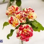 75th Agricultural Exhibition Bermuda Roses, April 18 2013-47