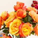 75th Agricultural Exhibition Bermuda Roses, April 18 2013-48