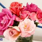 75th Agricultural Exhibition Bermuda Roses, April 18 2013-51
