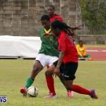 Devonshire Recreation Club vs Somerset Trojans FA Cup Final Bermuda April 7 2013 (11)