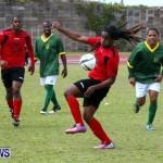 Devonshire Recreation Club vs Somerset Trojans FA Cup Final Bermuda April 7 2013 (19)