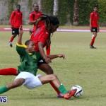 Devonshire Recreation Club vs Somerset Trojans FA Cup Final Bermuda April 7 2013 (25)