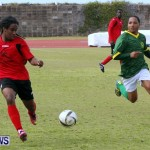 Devonshire Recreation Club vs Somerset Trojans FA Cup Final Bermuda April 7 2013 (27)