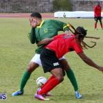 Devonshire Recreation Club vs Somerset Trojans FA Cup Final Bermuda April 7 2013 (28)