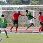 Devonshire Recreation Club vs Somerset Trojans FA Cup Final Bermuda April 7 2013 (38)