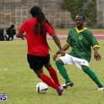 Devonshire Recreation Club vs Somerset Trojans FA Cup Final Bermuda April 7 2013 (4)