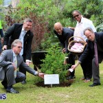 Earth Day Tree Planting, Bermuda April 22 2013 (8)