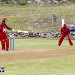 Pepsi ICC World Cricket League [WCL] Division Bermuda vs Oman, April 29 2013 (9)