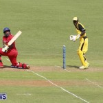 Pepsi ICC World Cricket League [WCL] Division Bermuda vs Uganda, April 28 2013 (11)