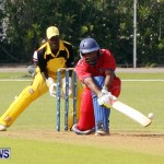 Pepsi ICC World Cricket League [WCL] Division Bermuda vs Uganda, April 28 2013 (23)