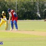 Pepsi ICC World Cricket League [WCL] Division Bermuda vs Uganda, April 28 2013 (31)