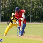 Pepsi ICC World Cricket League [WCL] Division Bermuda vs Uganda, April 28 2013 (33)