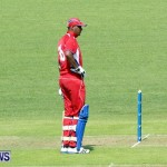 Pepsi ICC World Cricket League [WCL] Division Bermuda vs Uganda, April 28 2013 (7)