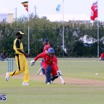 Pepsi ICC World Cricket League [WCL] Division Bermuda vs Uganda, April 28 2013 (73)