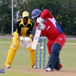 Pepsi ICC World Cricket League [WCL] Division Bermuda vs Uganda, April 28 2013 (93)