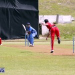 Pepsi ICC World Cricket League [WCL] Division Oman vs Italy, April 28 2013 (10)