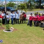 Nahge O'Brien Memorial Tree Planting, CedarBridge Bermuda May 3 2013-1