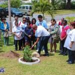 Nahge O'Brien Memorial Tree Planting, CedarBridge Bermuda May 3 2013-17