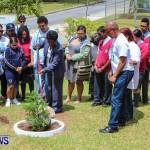 Nahge O'Brien Memorial Tree Planting, CedarBridge Bermuda May 3 2013-18