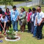 Nahge O'Brien Memorial Tree Planting, CedarBridge Bermuda May 3 2013-20