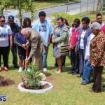 Nahge O'Brien Memorial Tree Planting, CedarBridge Bermuda May 3 2013-21