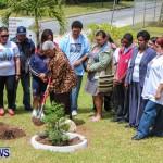 Nahge O'Brien Memorial Tree Planting, CedarBridge Bermuda May 3 2013-22