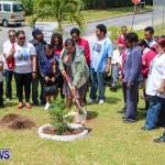 Nahge O'Brien Memorial Tree Planting, CedarBridge Bermuda May 3 2013-23
