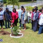 Nahge O'Brien Memorial Tree Planting, CedarBridge Bermuda May 3 2013-24