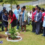 Nahge O'Brien Memorial Tree Planting, CedarBridge Bermuda May 3 2013-25