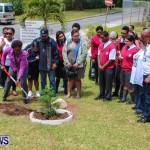 Nahge O'Brien Memorial Tree Planting, CedarBridge Bermuda May 3 2013-27