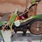Bermuda Onion Day April 1 2013-20