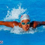 National Swimming Championships Bermuda, June 9 2013-11