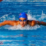National Swimming Championships Bermuda, June 9 2013-12