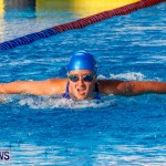 National Swimming Championships Bermuda, June 9 2013-14