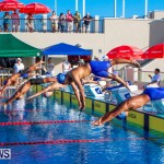 National Swimming Championships Bermuda, June 9 2013-16